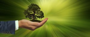 sustainability 3303398 640